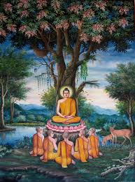 welcome to bodhi tree