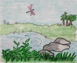 nature drawings drawings ideas for kids