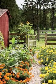 Backyard Flower Gardens by 1409 Best Flower Garden Pictures Images On Pinterest Flowers