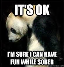 Sad Panda Meme - sad panda memes quickmeme