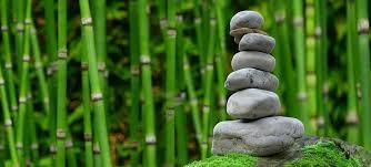 imagenes zen gratis zen imágenes pixabay descarga imágenes gratis