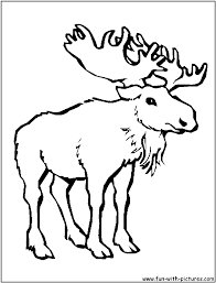 more animals coloring pages free printable colouring pages for
