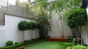 modern garden design blog planting fulham and