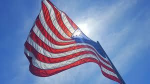 Little Dipper Flag Salute To Service Veteran U0027s Day Specials Belmont Park