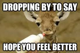 Feel Better Meme - giraffe feel better memes quickmeme