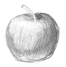 best 25 apple sketch ideas on pinterest what is cross drawing