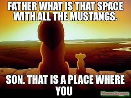 Father And Son Meme - father what is that space with all the mustangs son that is a