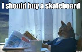 Skateboard Meme - i should buy a boat cat meme i should buy a skateboard weknowmemes