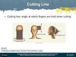 trimming hair angle cut chapter 16 haircutting note this chapter of the instructor