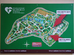 La Zoo Map Map Of Bioparco Rome 15 10 09 Zoochat