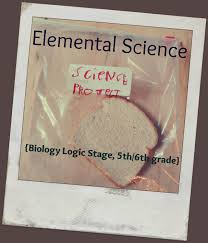 smallworld review elemental science biology logic stage and