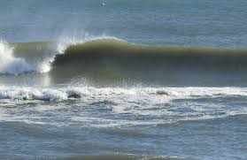 thanksgiving week corolla surf shop
