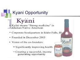 Kyani Business Cards Kyani Product U0026 Business Overview1
