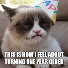 Grump Cat Meme - grumpy cat birthday meme lolrofl com grumpy cat pictures