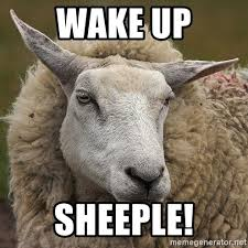 Sheeple Meme - wake up sheeple true christian meme generator