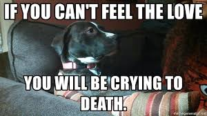 Feel The Love Meme - if you can t feel the love you will be crying to death mandy meme