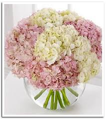 White Hydrangea Centerpiece by Hydrangea Centerpiece With A Ribbon On Vase But In Purple For