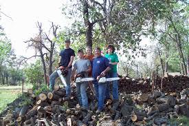 chainsaw testimonials stihl usa