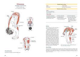 Human Anatomy Physiology Pdf Yoga Anatomy 2nd Edition Ebook Leslie Kaminoff Amy Matthews