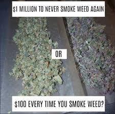 Marijuana Meme - marijuana memes which one i know what i d have facebook