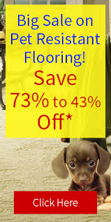 floor maintenance floor care cleaning tips express flooring
