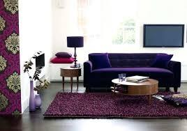Purple Sleeper Sofa Purple Sofas Purple Living Room Amazing Living Rooms Best