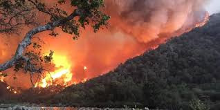 Western Us Wildfires 2015 by 1 Dead As New Wildfire Rages In N California