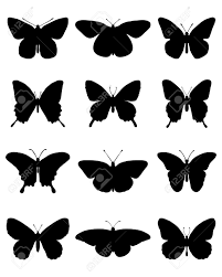 black silhouettes of different butterflies vector illustration