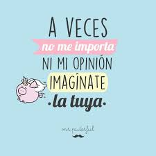 imagenes con frases no me importa no me importa tu opinión mr wonderful mr puterful miss borderlike