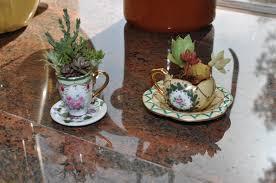 Cactus Planter by Diy Tea Cup Cactus Planter Misobelle