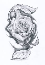 pink roses and butterfly tattoo design