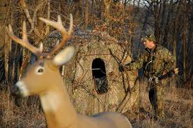 Bow Hunting From A Ground Blind Tree Stand Vs Ground Blind What U0027s Best For Whitetail