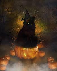 halloween art halloween cat by tinca2 on deviantart two cats