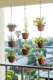 apartment gardening indoors jennybeautydiva club