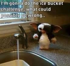 Challenge Water Wrong Gizmo S Challenge Eurylade Reviews