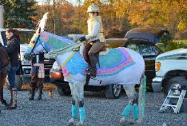 Names Halloween Costumes Horse Costumes Sleezy Barb Horsewear