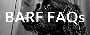 the original top 50 barf faqs for beginners barf a bones and