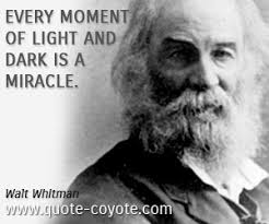 Light And Dark Quotes Light Quotes Quote Coyote