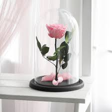 beauty and the beast rose large forever pink rose
