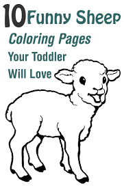 82 sheep images sheep drawings coloring pages