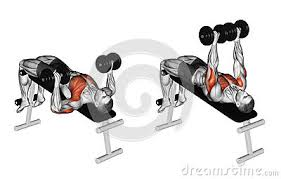 Flat Bench Press Dumbbell Chest Workouts Incline Bench Press Flat Bench Press Decline