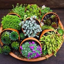 clay pot planter ideas you u0027ll love this inspiration clay