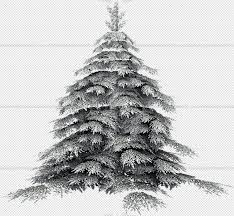 packs cut out vegetation trees cut out trees package 1 00011