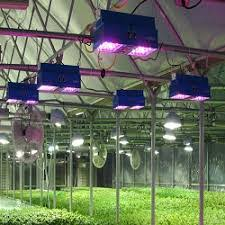 Hubbell Lighting Global Horticultural Led Lighting Market 2017 U2013 Osram Everlight