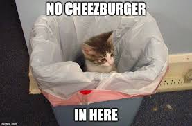 Cheezburger Meme Maker - no cheezburger imgflip