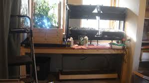 backyard aquaponics u2022 view topic spindog u0027s simple basement system