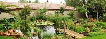 epdm natural swimming pools waterproofing ponds u0026 water features