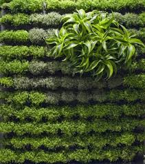 8 living walls and vertical gardens to bring a touch of spring