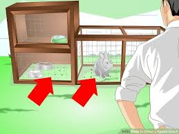 3 ways to clean a rabbit hutch wikihow