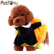 pumpkin costume halloween dog costumes pumpkin promotion shop for promotional dog costumes